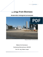 Bio Energy Biological Processes