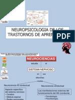 1_neuropsicologia_de_los_trastornos_del_aprendizaje.ppt
