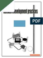 Software development practices