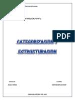 Categorizacion y Estructuracion. Nestor Betancourt