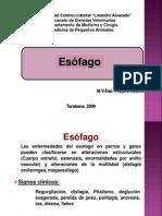 Clase Esofago