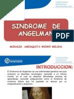 Sindrome de angelma DPT.ppt