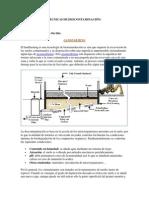 Tecnicas Descontaminacion - Suelos