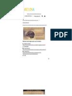 » Efectos de la depresión en el cerebro.pdf
