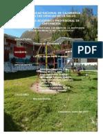 Programa Educativo Institución Educativa Inicial