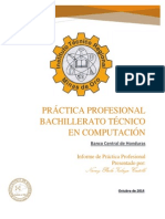 Imprimir Informe de La Practica