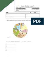 44522941-TESTE-6º-ANO-ALIMENTACAO.pdf