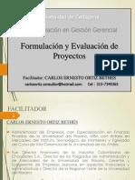 1. Formulacion y Evaluacion Proyectos - Diapositivas Oct
