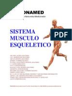 Sistema Músculo Esquelético Visuatet
