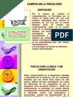 CAMPOS DE LA PSICOLOGIA