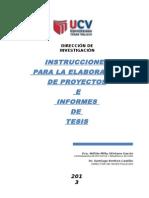 Instrucciones.elaborar.py.Tesis (1) (1) (1)