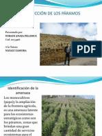 Trabajo Practico Evaluación de Riesgos Ambientales