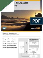 OpenSAP HANA1 Week 06 SAP HANA Advanced Development Options Presentation