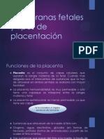 Membranas Fetales y Tipos de Placentación