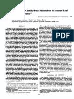 Plant Physiol. (1978) 62, 510-515