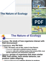 Ecosystem Structure