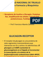 INSULINA-GLUCAGON-RECEPTORES-EXP.pptx