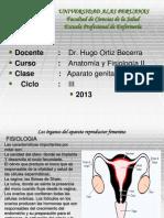 Clase 14 a Del Aparato Genital Femenino 2013
