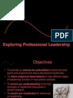 Exploring Professional Leadership