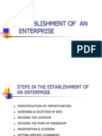 Establishment of an Enterprise