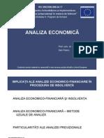 Analiza Economica Final