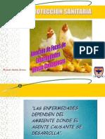 Atención de Focos de Enfermedades  Infecto Contagiosas..ppt