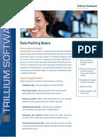 159497270 Data Profiling Basics