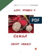 10_dolog_amiben_a_cekla_segit_neked