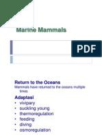 Biologi Laut - Mammalia