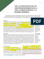 GLUTATIÓN Y SU ASOCIACIÓN CON LAS ENFERMEDADES NEURODEGENERATIVAS-LA ESQUIZOFRENIA-EL ENVEJECIMIENTO Y LA ISQUEMIA CEREBRAL.pdf