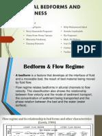 Bedform Alluvial (2)
