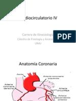 Cardiovascular IV