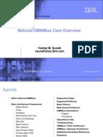 2010 11 10 AVKS OMNIBus Core Overview (2)