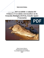 Crocodrylus intermedius