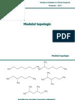 67533Modelul_topologic
