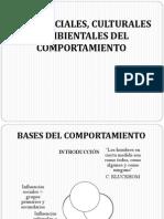 Bases Sociales, Culturales y Ambientales Del Comportamiento-social