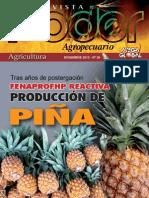 PODER AGROPECUARIO - AGRICULTURA - N 29 - DICIEMBRE 2013 - PARAGUAY - PORTALGUARANI