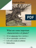 plants part 1