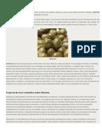Azeitona_propriedades medicinais