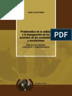Problematica de La Nulidad y La Impugnación de Los Acuerdos de Las Sociedades y Asociaciones
