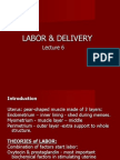 Labor & Delivery 6 Lecture Student Version Final(1)