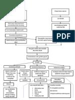 Patofisiologi CA Kulit