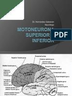 Motoneurona Superior e Inferior
