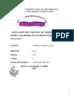 APLICACIÓN DEL PROCESO DE GERMINACIÓN DE SEMILLA DE HIERBA EN UN OBJETO PARA DECORAR UNA CASA.docx