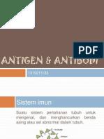 Antigen & Antibodi
