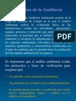 Ejecución de La Auditoría.docx