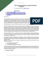 biomasa-eficiencia-energetica