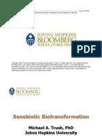 Xenobiotic Biotransformation Basic Concepts
