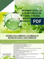 exposicion ambiental.pptx