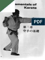 Livro-Essential-Karate.pdf